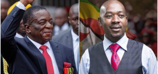 Crisis Looms as Chamisa Plans Parallel Swearing-in As Zimbabwe's President